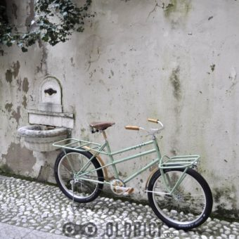 wooden-bicycle-special-cargo-bike-oldbici-9
